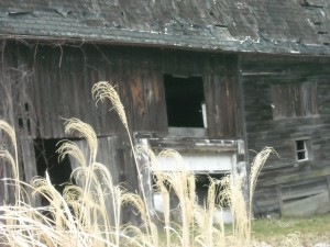 This old barn holds many memories