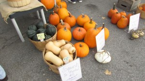 Pumpkins and squash; healthy freshness