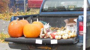 The October harvest on the back of an old truck