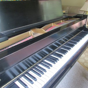 learning the skill of piano playing